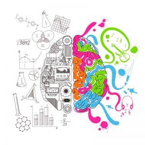 Cervello analitico creativo